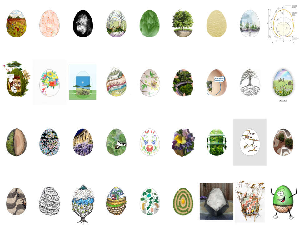 Gillespies Competition: Design an Easter Egg on the theme of Nature Connectedness