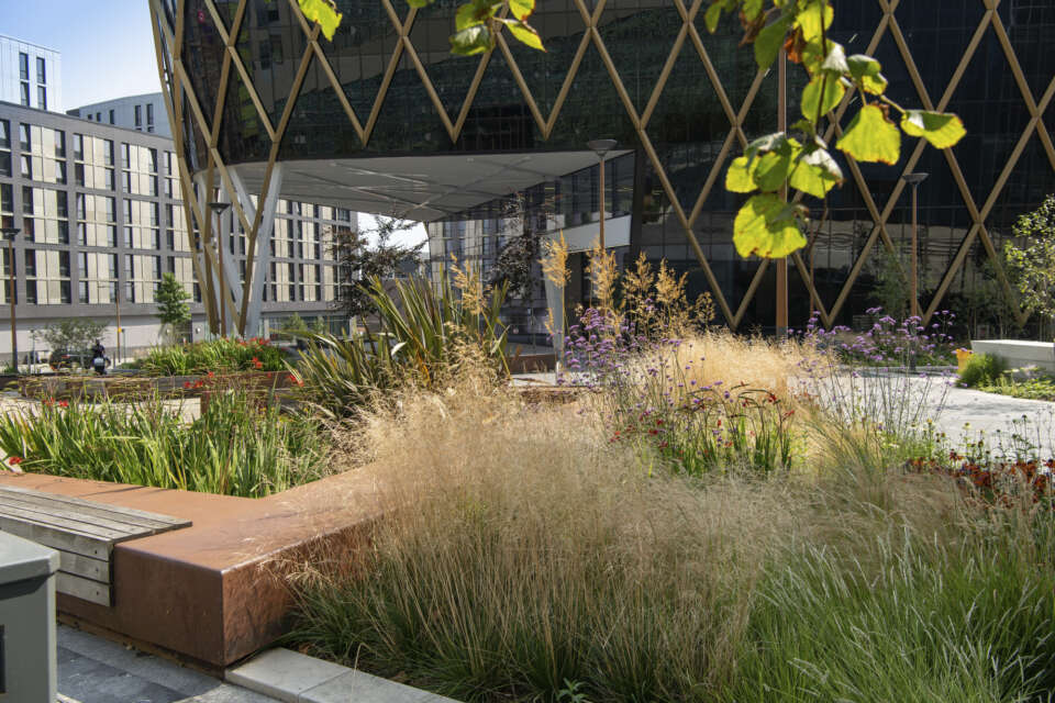 The Catalyst scoops sustainability award at Constructing Excellence National Awards