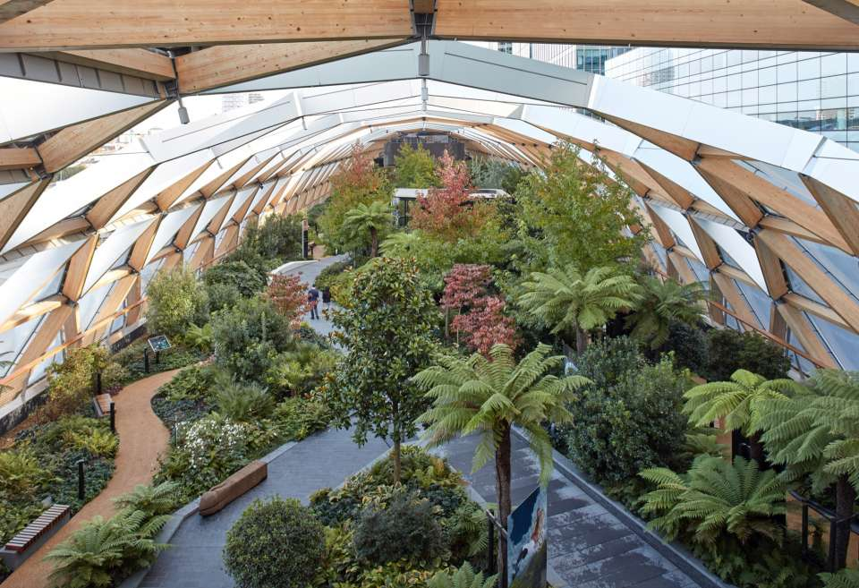 Gillespies scoops first prize at the European Garden Awards for Crossrail Place Roof Garden