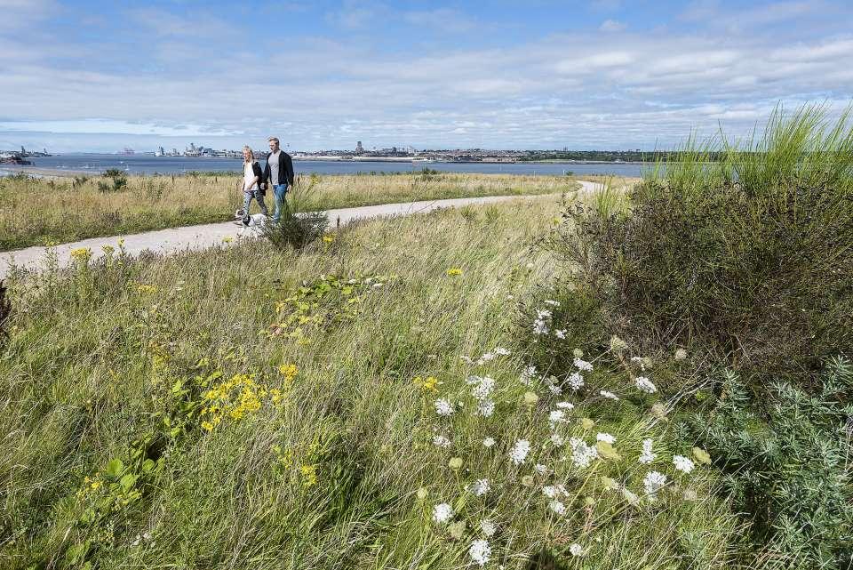 Port Sunlight River Park shortlisted for a 2017 Landscape Institute Award